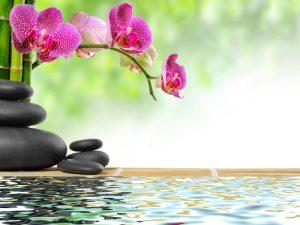 Zen basalt stones bamboo